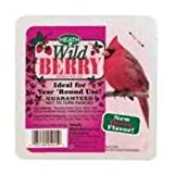 Berry Blast Wild Bird Suet Cake, My Pet Supplies