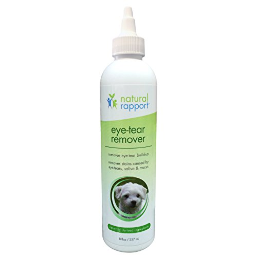 Antibiotic Eye Cream For Dogs - 5