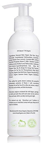 Amara-Organics-Facial-Cleanser-with-15-Vitamin-C-6-fl-oz