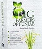 Big Farmers Of Punjab: Socio-Economic Profile, Cropping Pattern, Consumption And Investment Pattern Political Affiliation, Career Plan Of Young Generation