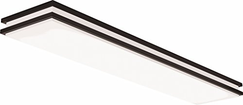 Lithonia Lighting Bronze 4-Ft LED Flush Mount, 4000K, 35.5W, 2,560 - Fixture Residential Lighting Ceiling