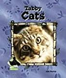 Tabby Cats, Julie Murray, 1577656458