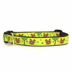 Up Country Nuts Dog Collar - Medium
