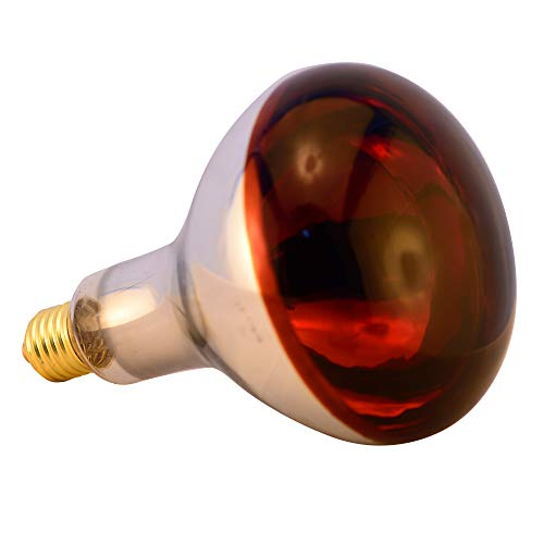 - BONGBADA Infrared Heat Lamp for Chicks 175W Explosion Proof Glass Light Bulb Farm Animal Bathroom Food R40-Painted