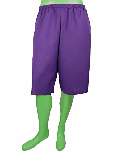 The Incredible Hulk Shorts Purple Adult (L/XL 36-38) (Incredible Hulk Costumes For Adults)