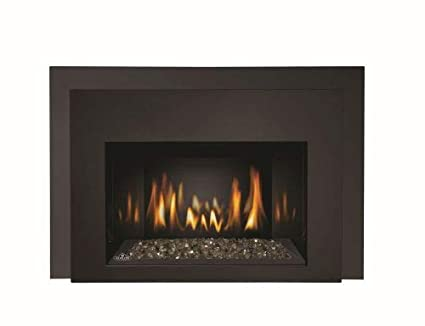 Amazoncom Napoleon Infrared 3g Natural Gas Fireplace Insert