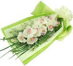 Ramo de 1 Orquídea Cymbidium natural Blanca + nota personalizada gratis!