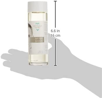 Metilina Valet Tónico After Shave - 200 ml: Amazon.es: Belleza