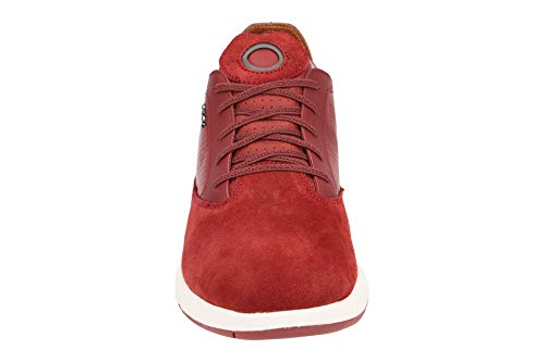 Nebula Rot Geox Sneaker Herren U B rEwqgREnZX