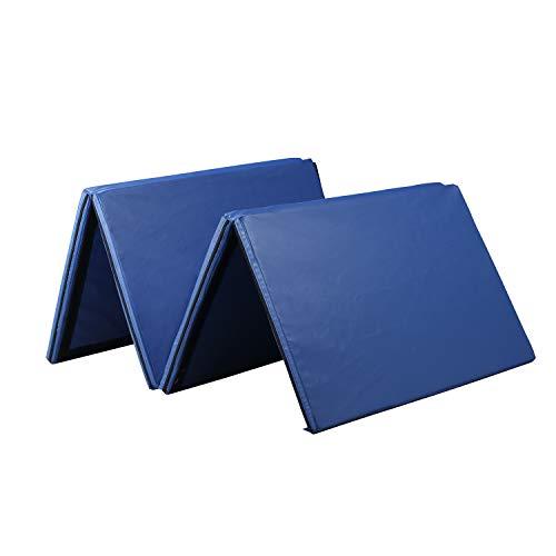 ZENOVA Gymnastics Mat 4'x10′ Thick Large Folding Tumbling Gym Panel Crash Mats with Handles Women Home Gym Fitness (Pure Blue)