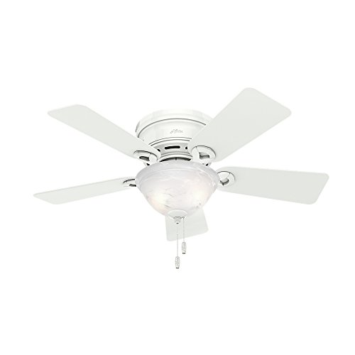 Hunter 51022 Conroy 42-Inch Snow White Ceiling Fan with Five Snow White Blades and a Light Kit