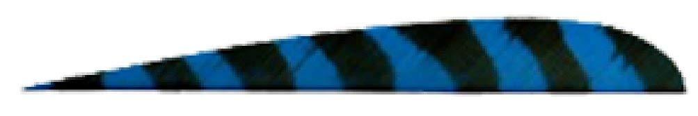 Trueflight Trueflight Blue Bar 5'' Lw Feathers