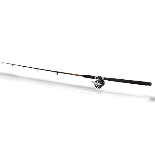 Penn Level Wind 90960 Fishing Rod and Reel Combo ()