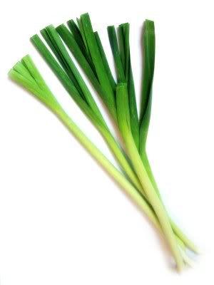 amazon com 500 chinese leek oriental garlic garlic chives