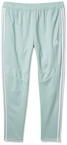 adidas Men's Tiro 19 Training Pant Green Tint/White