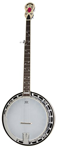 Epiphone EFB6MRCH1 STAGEBIRD Banjo (6-String, Electric), Red Mahogany by Epiphone