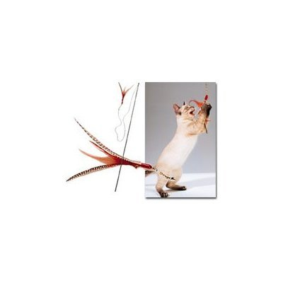 The Da Bird Value Pack (Includes 1 Da Bird Original Single 3 Foot Pole Cat Toy and 2 Replacement Feathers), My Pet Supplies