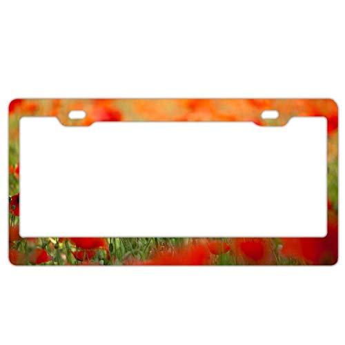 YEX Abstract Nature Flower Poppies Petals Spring The Field License Plate Frame Car License Plate Covers Auto Tag Holder 6