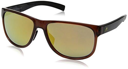 Adidas Lunettes de soleil à ressort Brown Shiny/Black