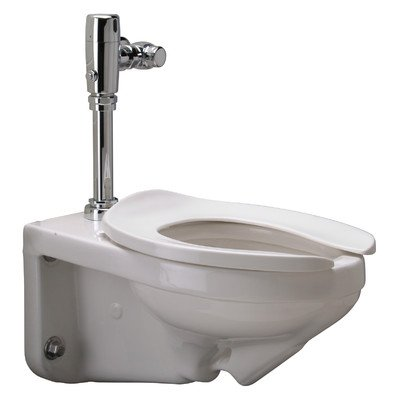Elongated Flush Valve Toilet (Zurn Z5615.258.00.00.00 1.28 gpf Wall Hung Elongated Toilet System with Top Spud, Diaphragm Manual Flush Valve)