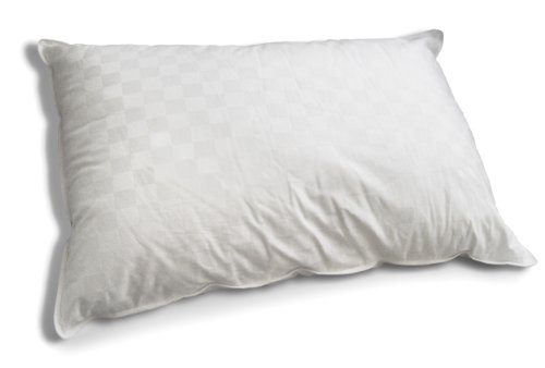 Down Etc. Aquaplush Polyester Queen Pillow, White