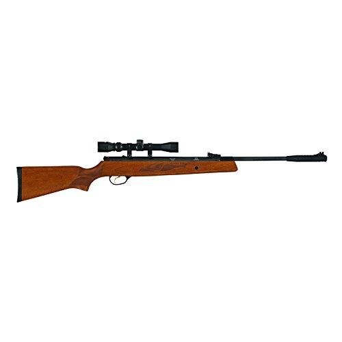 Hatsan 95 Air Rifle Combo, Walnut Stock air rifle