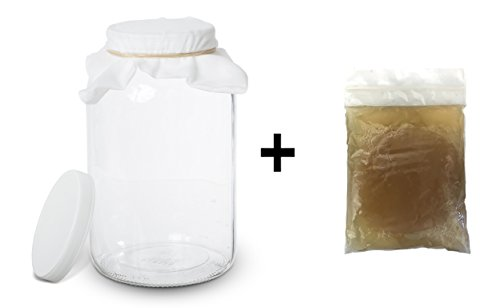 Glass Starter Kit (Kombucha Scoby with Starter Tea and 1 Gallon Glass Kombucha Jar - Home Brewing and Fermenting Kit with Cheesecloth Filter, Rubber Band and Plastic Lid - By Kitchentoolz)