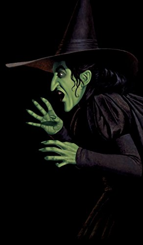 WOWindow Posters Green Wicked Witch Halloween Window Decoration 34.5