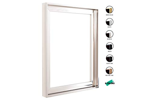 Floater Frames for Canvas Paintings 16x20 | 6 Colors | Floater Frame for Stretched Canvas, Canvas Panels and Finished Artwork | 1-3/8