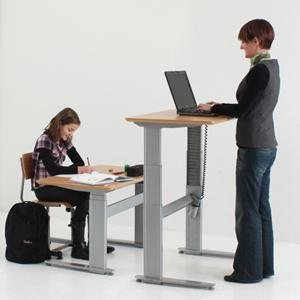 ergonomic adjustable electric stand desks height sit loctek category product workstations desk