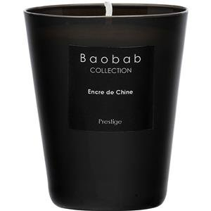 Baobab MAX24ENC Encre De Chine Candle, Wax, 24x 20x 20cm