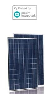 Jinko Mx 265W Poly Blk Wht Optimized Solar Panel   Pack Of 4
