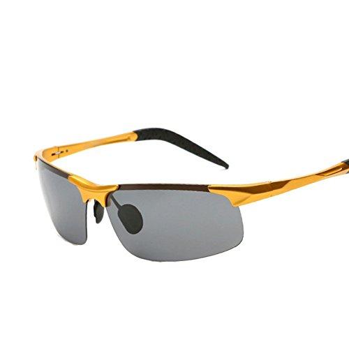 XFIERY SG800018C1 Fashion TAC Lens Movement Al-Mg Frames - Sunglasses 39 Review Dollar