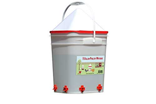 5 Gallon Chicken Waterer