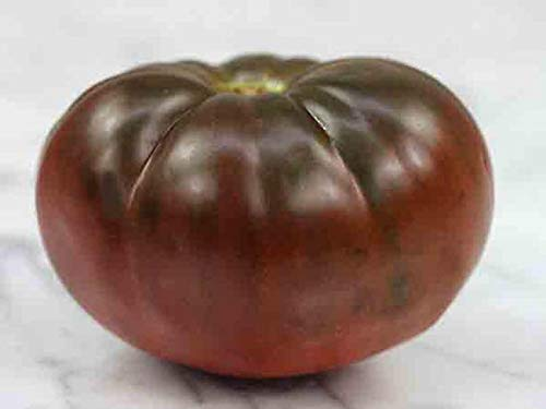 1 Light 71 Brandywine - Heirloom Tomato Seeds - 'Brandywine Black' - Organic ! Great for Sandwiches, Salads,Grilling and More ! (1 Packet- 50 Seeds) by ThronesFarm