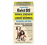Lambert Kay Evict Double Strength Liquid Wormer for Puppies and Dogs, 2-Ounce, My Pet Supplies