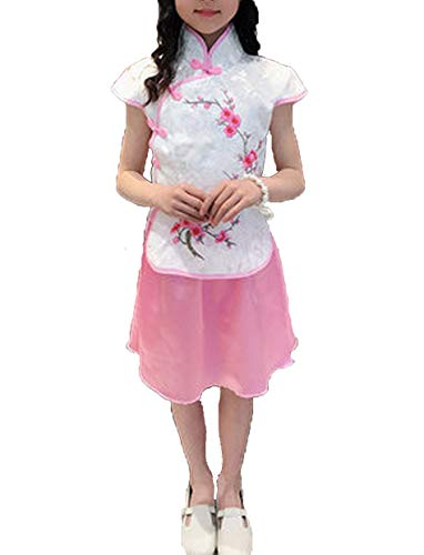 Children Cheongsam Summer Girls Chinese Style Princess Dress Children Embroidery Tang Costumes,2,15T