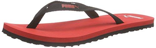 Puma Sun Flip, Unisex-Erwachsene Zehentrenner, Rot (puma red-black 02), 42 EU (8 Erwachsene UK)