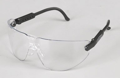 3M 90750-80025T Professional Safety Eyewear with Clear Lens and Black Frame