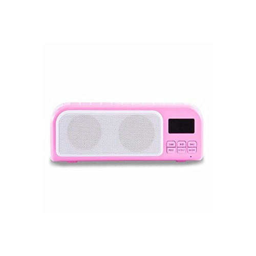 INIL Portable Mini Radio