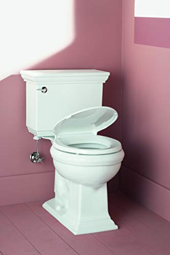 Miraculous Kohler Cachet Quiet Close Round Toilet Seat Gmtry Best Dining Table And Chair Ideas Images Gmtryco