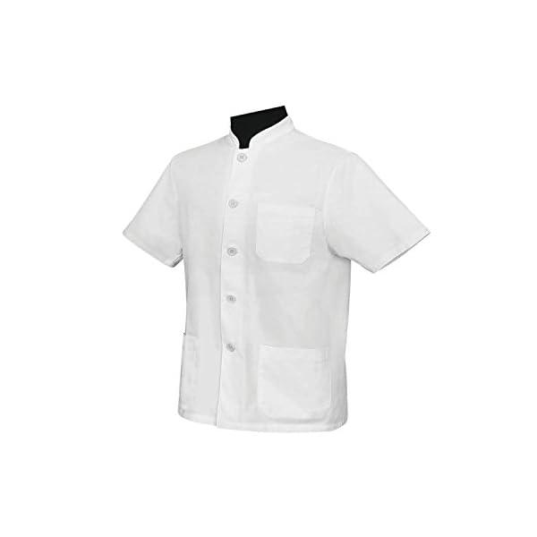 MISEMIYA - Chaquetas Uniformes Chef Cocinero DE Bar Restaurante con Mangas Cortas - Ref.843 3