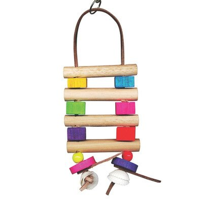 Bodacious Bites Bird Toy Color: Chow, Size: Small