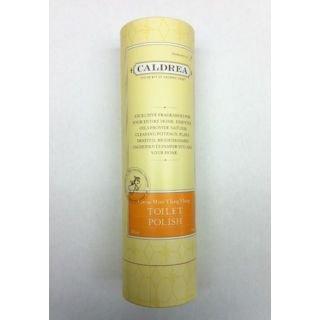 Cleaning Products Caldrea (Caldrea Citrus Mint Ylang Ylang Toilet Polish)