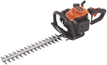Tanaka TCH22EAP2 21cc 2-Cycle with 20-Inch Double-Sided Blades
