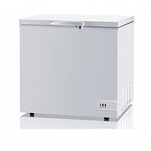 Congelador Horizontal 1 puerta DAEWOO FFA250: Amazon.es: Hogar