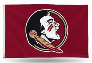 Rico Industries NCAA Florida State Seminoles 3-Foot by 5-Foot Single Sided Banner Flag with Grommets