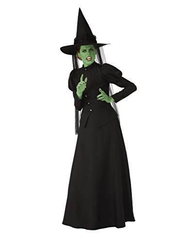 Costume Of Witch Halloween (Rubie's Super Womens Deluxe Wicked Witch Costume)