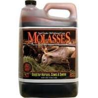Evolved 23201 Molasses (Molasses Feed)