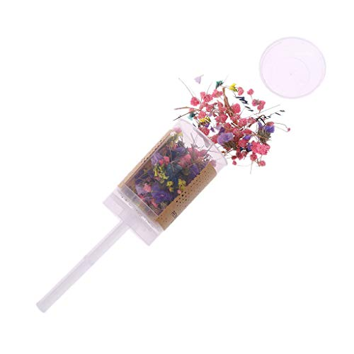 Because0f Dried Flower Confetti Popper, Push Pop Container, Bridesmaid Shooters Wedding Birthday Party Favors Supplies (#26) ()